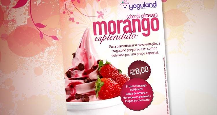 Yoguland tem novidades em suas lojas